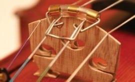 Roth Sihon violin mute