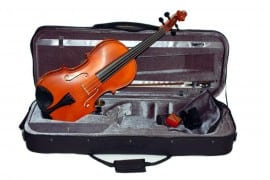 Caswells Etude Viola outfit