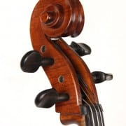 Caswell's Maestro Cello outfit