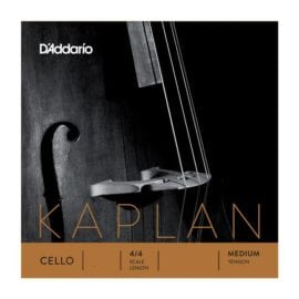 Kaplan Cello D string