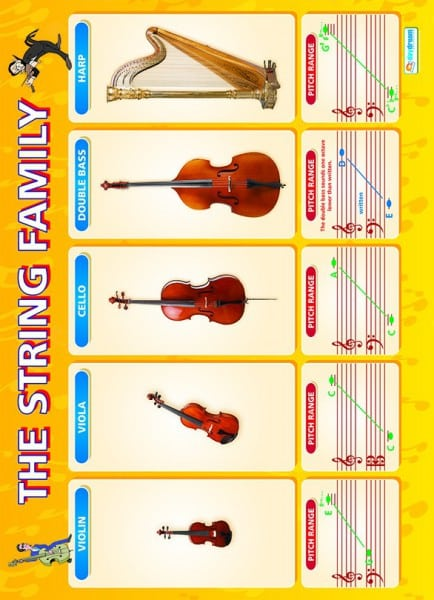 Music Poster - The String family