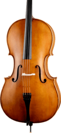 Paesold PA602A cello
