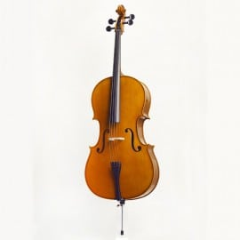 Andreas Zeller solid back cello outfit