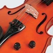 Stentor Electric-Acoustic violin detail