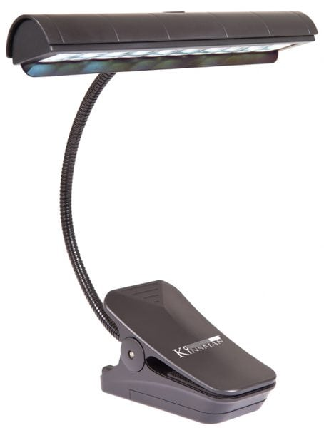 Orchestra Music Stand Light