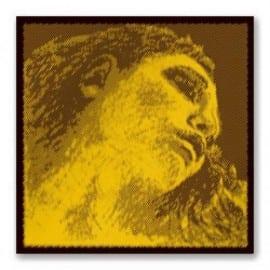 Evah Pirazzi GOLD violin E string