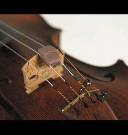 Spector Violin mute
