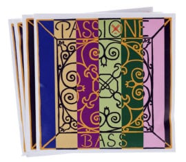 Passione Double Bass string set