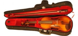 Paesold PA401E violin outfit 4/4