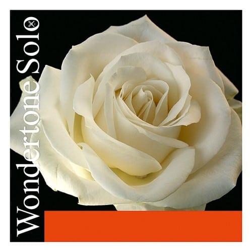 Wondertone Solo Violin E string
