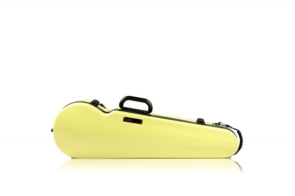 BAM Hightech contoured Anise violin case