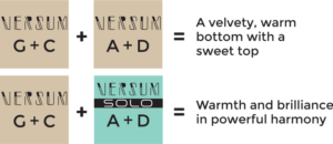 saitendiesielieben-versum-gc-2-en