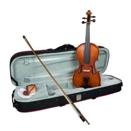 The Hidersine Vivente Academy violin set up with Wittner fine tune pegs