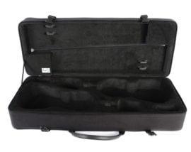 BAM Classic Double Violin case