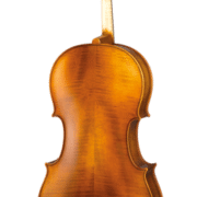 Paesold PA601E cello back