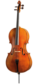 Paesold PA605 Cello