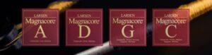 magnacore-header1