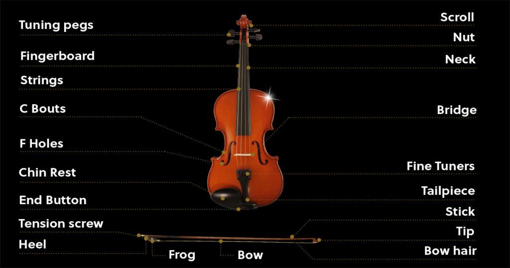 violin-diagram Violin Schematics on violin components, violin symbol, violin neck measurements, violin illustration, violin drawing,